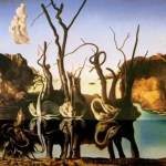 salvador-dali-swans-reflecting-elephants